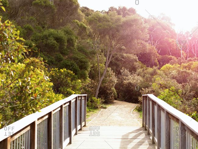 Wooden footbridge to beach, Point Addis National Park, Anglesea, Australia