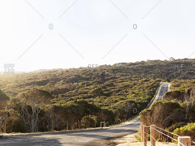 Empty rural road, Point Addis National Park, Anglesea, Australia