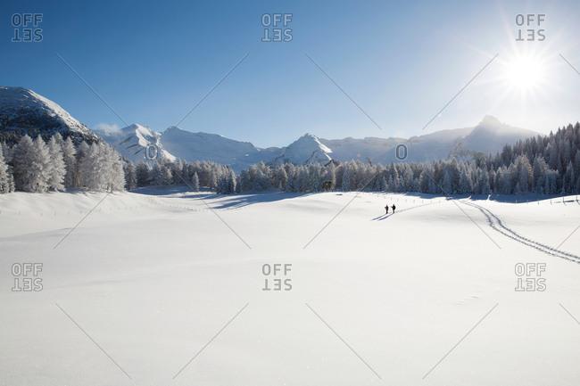 Mountain range, trees and senior couple far away on snowy landscape, Sattelbergalm, Tyrol, Austria