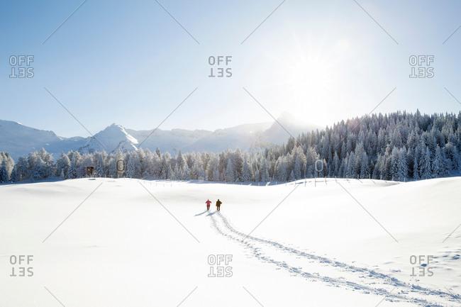 Snow tracks of senior couple walking to trees and mountain range, Sattelbergalm, Tyrol, Austria