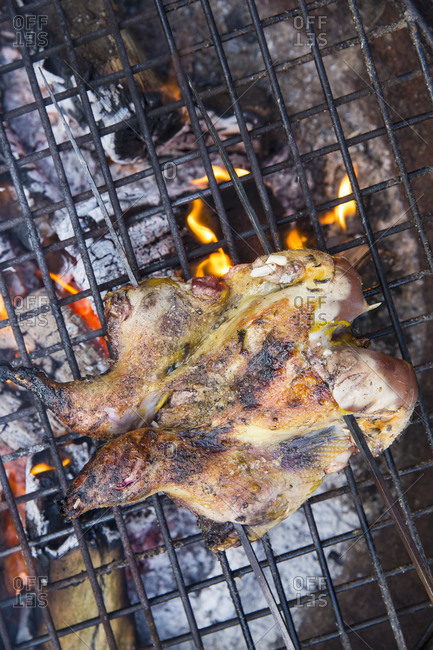 A spatchcocked game bird roasting above glowing coals