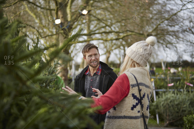 A man and woman discussing and choosing a Christmas tree