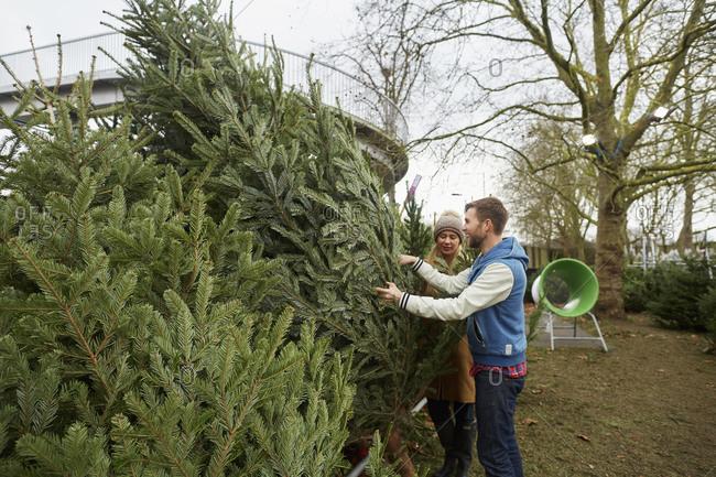 A woman in a garden center choosing a Christmas tree