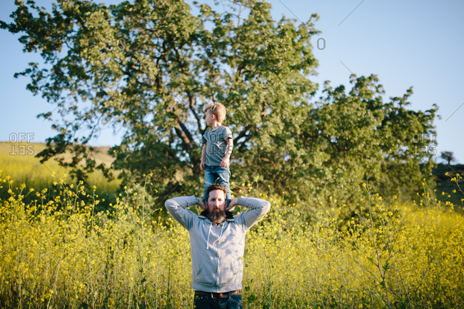 Bearded man standing in field with young son standing on his shoulders