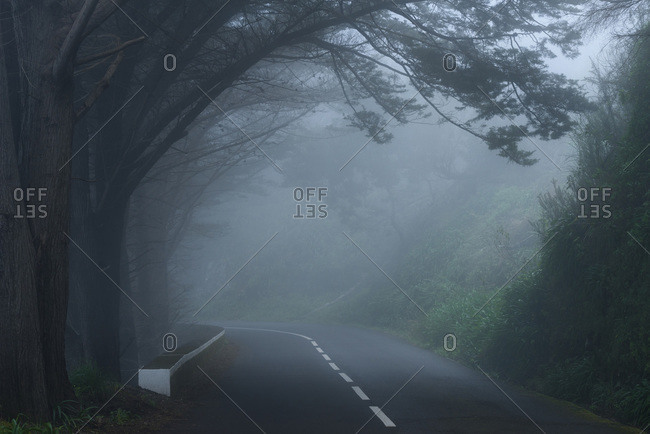 Foggy street and gloomy atmosphere on Madeira, Portugal