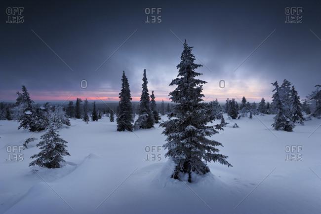 Pallastunturi the southeastern part of a 50 kilometer-long mountain chain in Lapland in winter, Finland