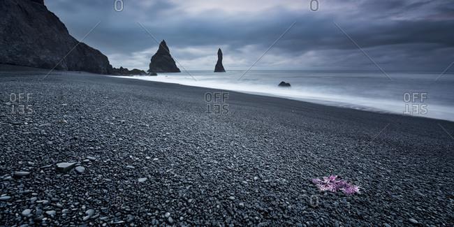 Reynisdrangar basalt sea stacks situated under the mountain Reynisfjall near the village V�k, Iceland