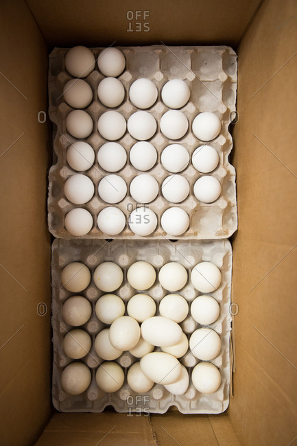 Box with cartons of eggs