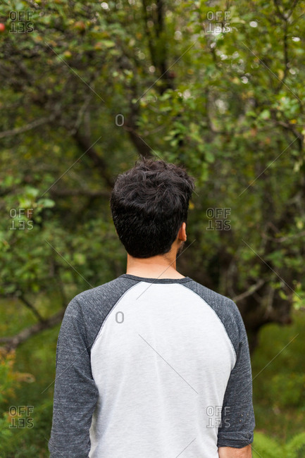Man in baseball T-shirt looking at forest