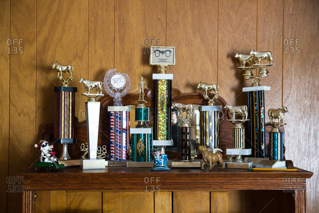 Collection of agricultural trophies
