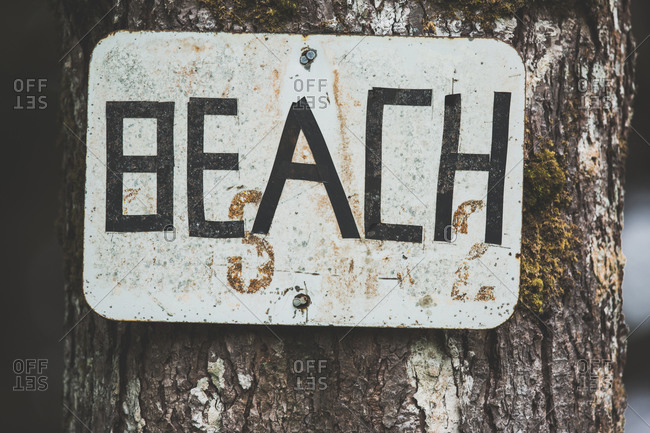 Handmade beach sign nailed to a tree trunk