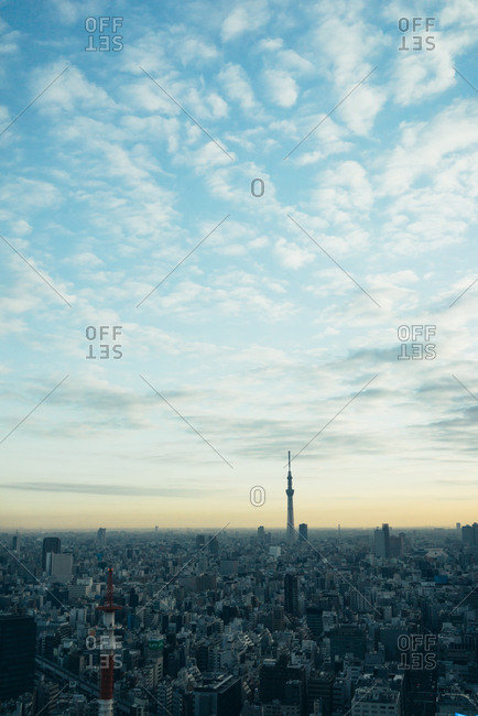 Tokyo Sky Tree rising above the skyline of Tokyo, Japan