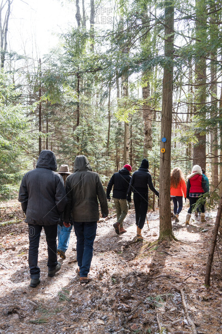 Group of people walking through the woods