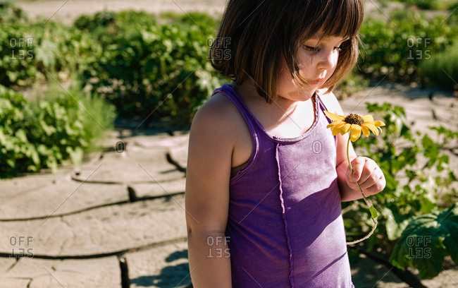 Young girl picking wildflowers