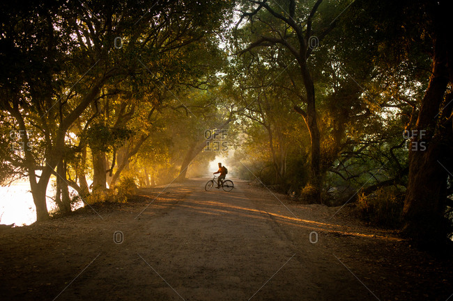 Man riding a bicycle, Bharatpur Park, India