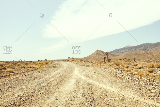 Dirt Road through Death Valley