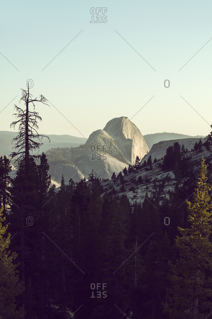 Vista in Yosemite National Park