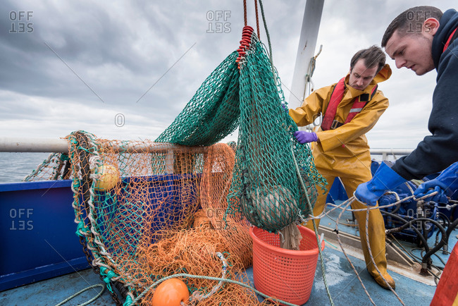Fishermen and research scientist landing catch of fish on research ship