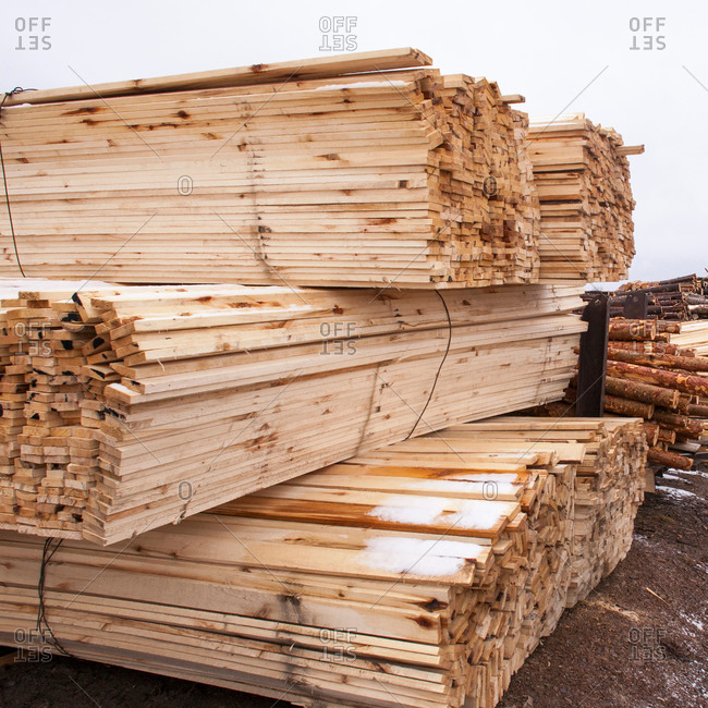 Stacks of timber and tree trunks in timber yard