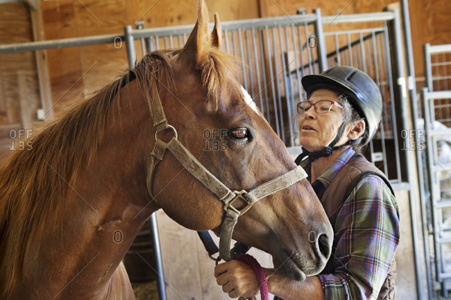 An older women wearing riding helmet holds a chestnut American Quarter Horse in horse barn.
