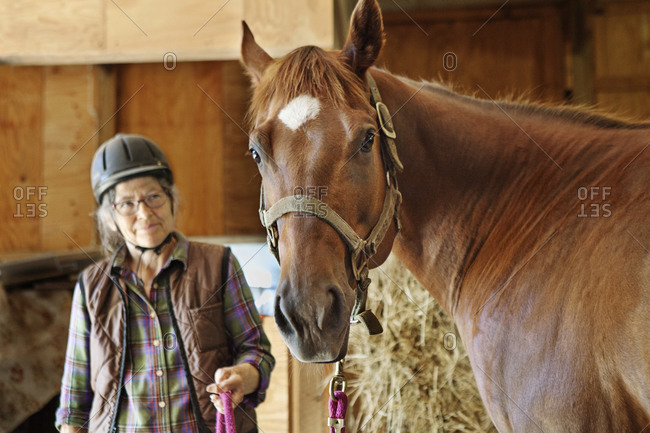 An older woman wearing riding helmet smiles at her chestnut American Quarter Horse while holding lead rope in horse barn.