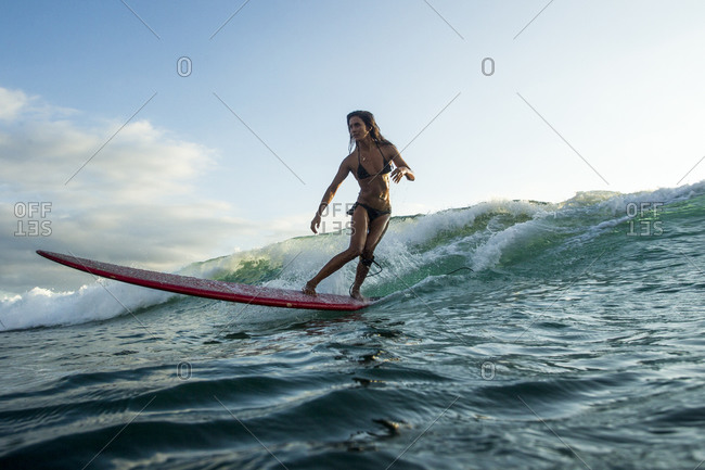 A girl in a bikini surfs a small wave on her long board at sunset