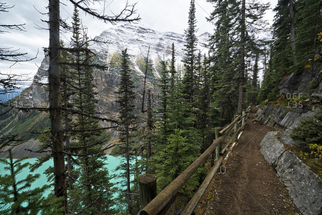 A hiking trail above Lake Louise