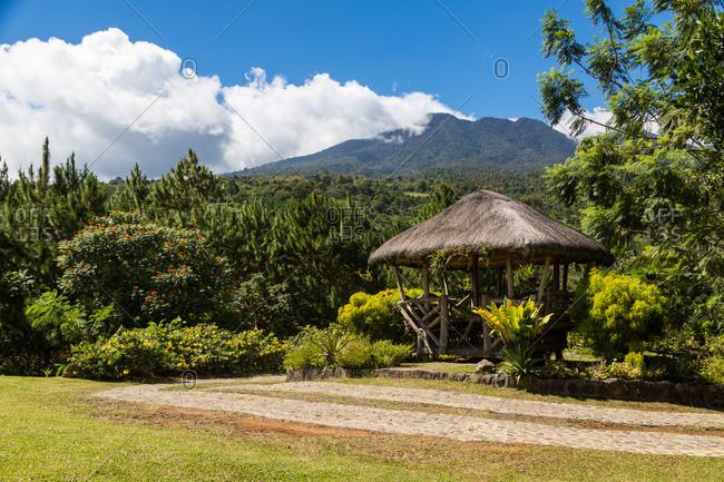 Grass hut in a beautiful tropical garden, Philippines