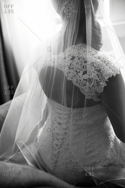 Back view of bride's dress and veil