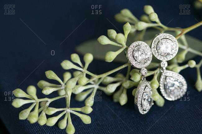 Pair of diamond earrings hanging on seeded eucalyptus