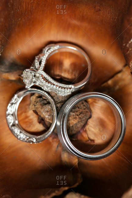 Close-up of wedding rings inside a dried magnolia blossom
