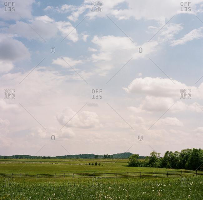 A pastoral landscape in summer