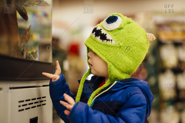 Toddler at pet store with winter hat and coat looking at aquarium of turtles