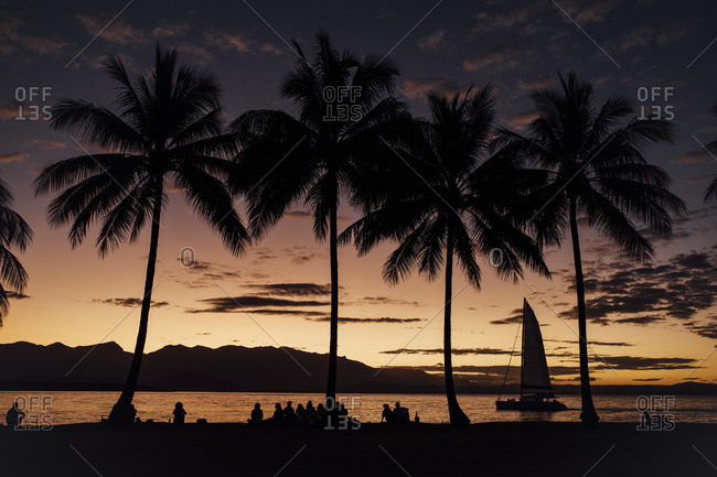 People on silhouetted beach