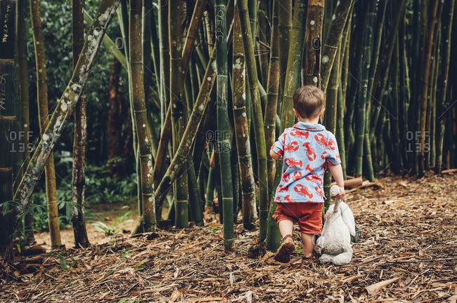 Toddler boy near bamboo plants