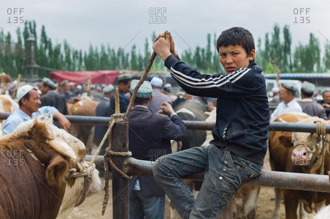 Kashgar, China - May 10, 2015: Boy sitting on fence at livestock auction, Kashgar