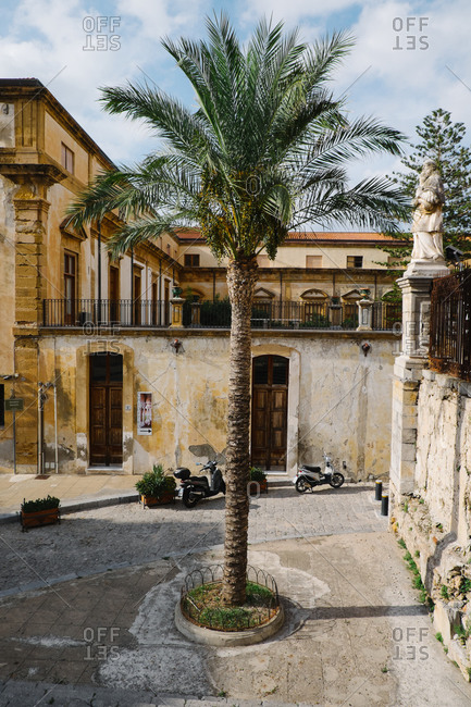 Cefalu, Sicily - August 15, 2015: Palm tree in a courtyard in Cefalu, Sicily