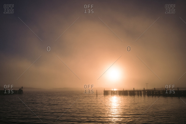 Foggy harbor in Sweden