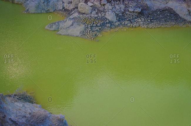 Close-up of a green hot spring pool in New Zealand