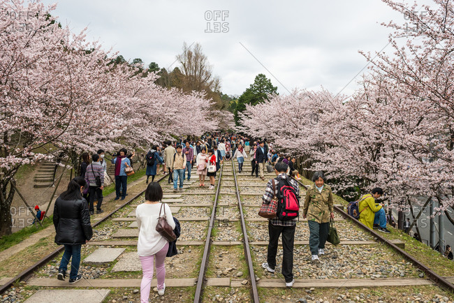 Kyoto, Japan - April 2, 2016: Japanese sightseeing along the Keage Incline