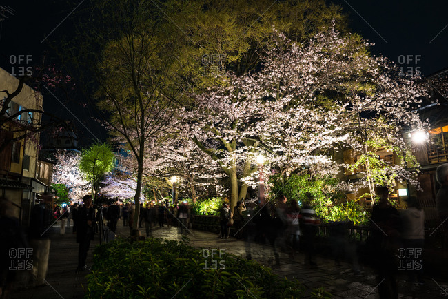 Silhouette of people sightseeing at night in Japan