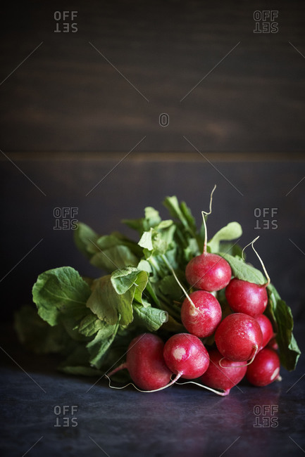 Still life of a bunch of radishes