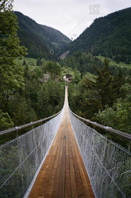 Swinging bridge across a wooded canyon