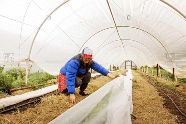 Woman setting tarp in hothouse