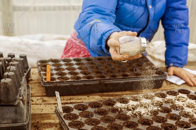 Woman sprinkling seeds in greenhouse