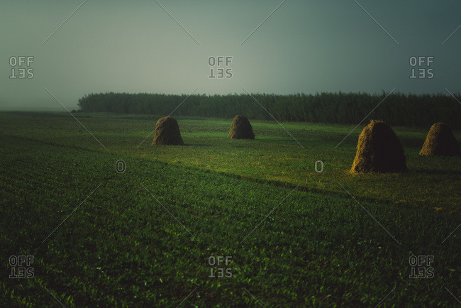 Green field with hay bales