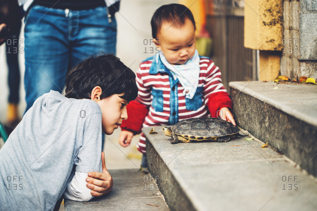 3/26/16, Guangzhou, China:  Two boys staring at a turtle on a step
