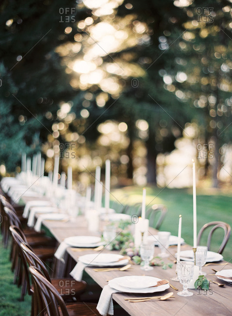 Table setting in the woods