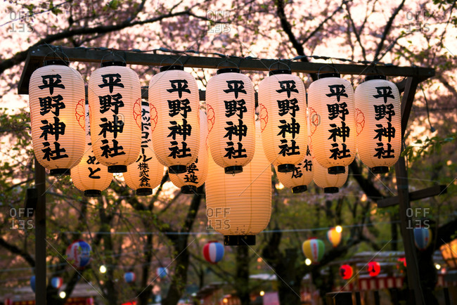 Row of lighted Japanese lanterns in a park at blossoming season
