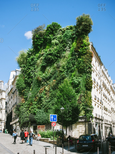 8/18/14: Green wall on a building on the Rue des Petits Carreaux in Paris, France